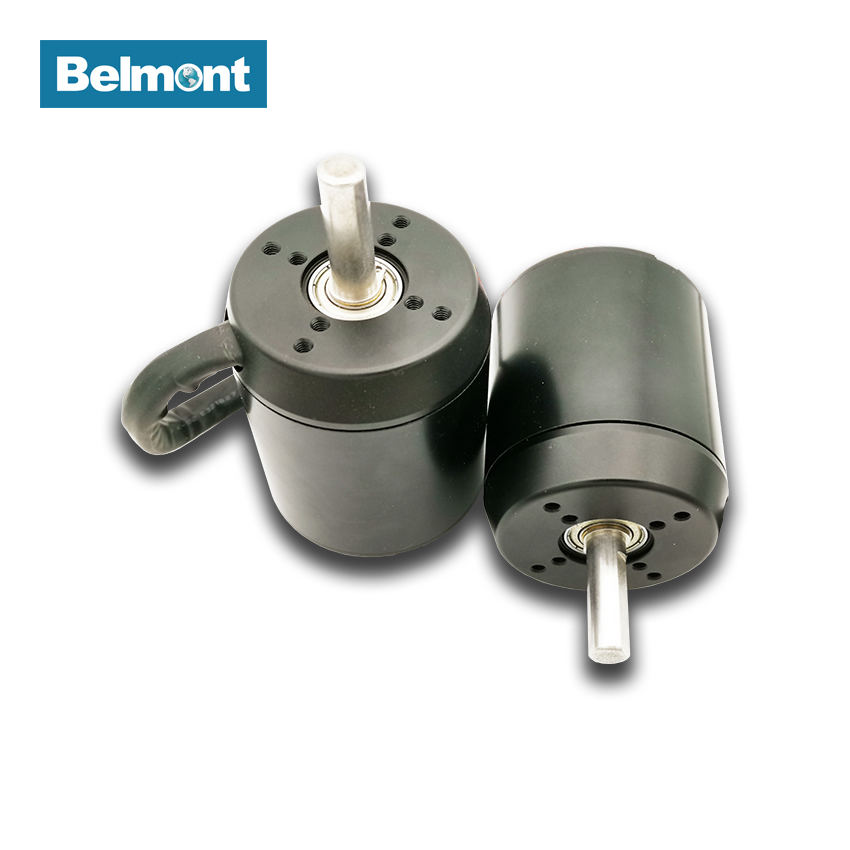 BLM-6374 24v High RPM Brushless DC Electric Motor For Electric Skateboard