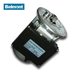 BAM96-4 series120v Single Phase Asynchronous Electric AC Motor For Food Processor